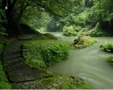 山中温泉の自然